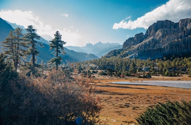 晴れた晴れた日には、木々や山々に囲まれた湖の美しい景色