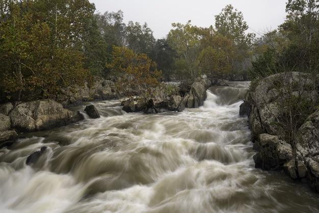 돌과 나무 사이에서 격렬하게가는 진흙 투성이의 강의 아름다운 전망