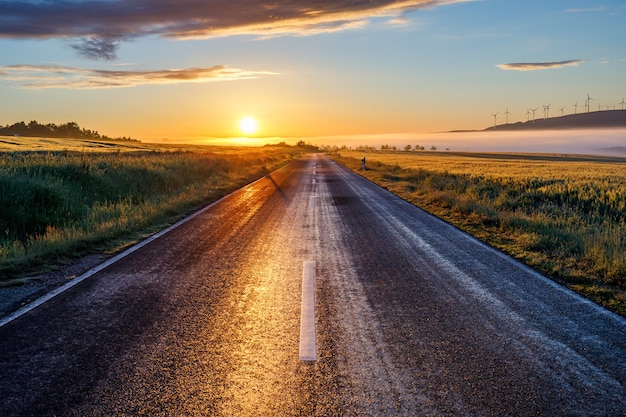 이른 아침에 일출에 도로의 아름다운 전망