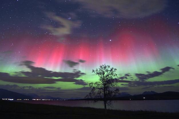 空に色とりどりのオーロラの下で湖のそばの木の美しい景色