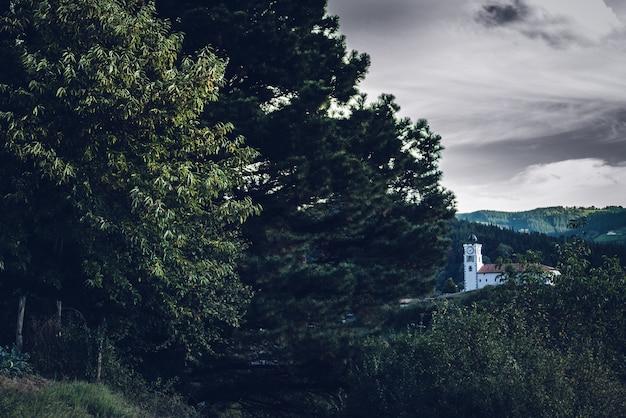 曇り空の下の森の木々の真ん中にある白い建物の美しい景色