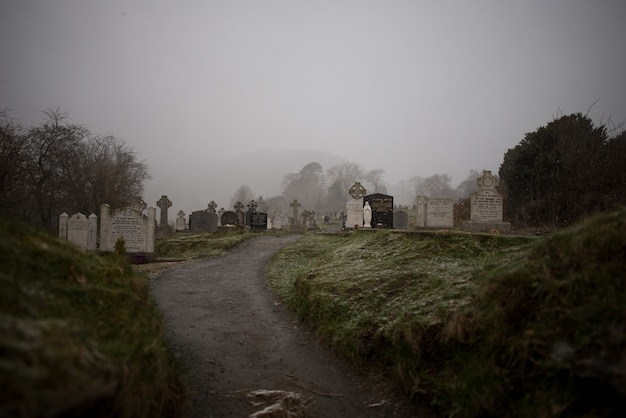 안개가 자욱한 날씨에 캡처 한 나무로 둘러싸인 오래된 묘지의 아름다운 전망