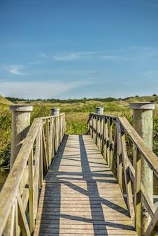 昼間の小さな川に架かる古い木造の橋の美しい景色