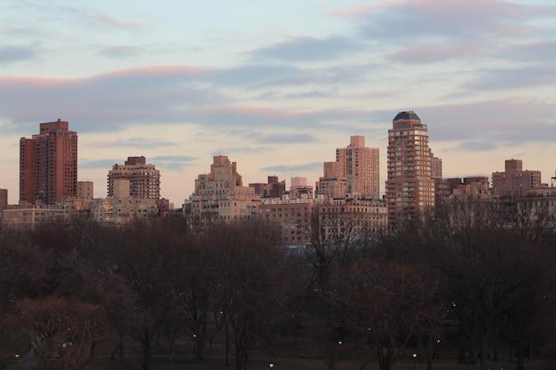 セントラルパークから撮ったニューヨーク市の美しい景色
