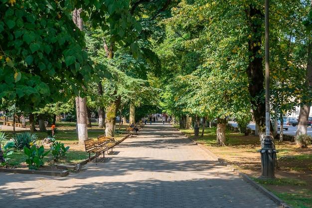 조지아 쿠타이시 중앙 공원에서 보행자 경로의 아름 다운 전망. 휴양.