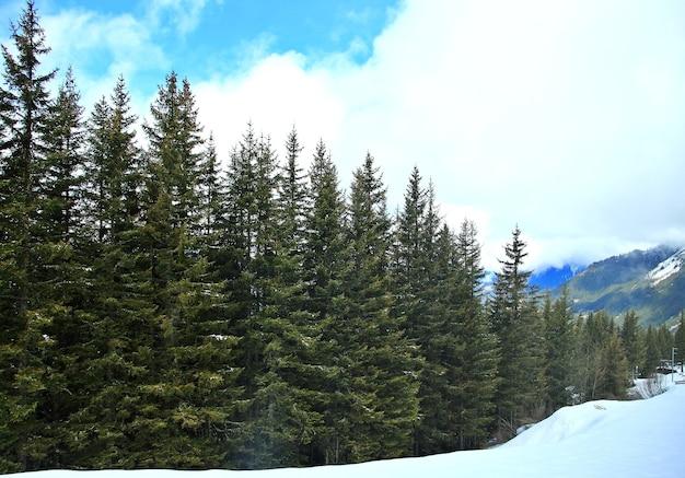 유명한 관광 열차 빙하 익스프레스, 스위스에서 겨울과 봄에 스위스 알프스의 아름다운 전망.