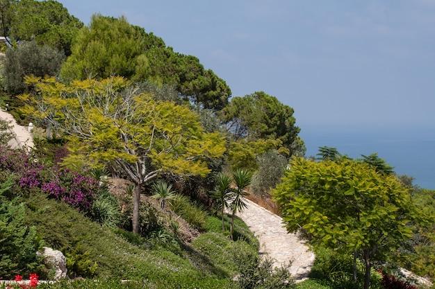 Прекрасный вид на общественные сады бахаи в хайфе в израиле