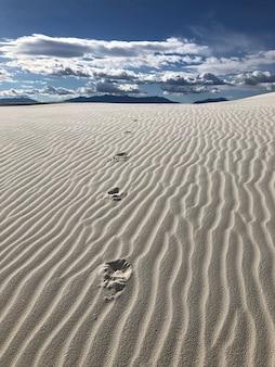 뉴 멕시코의 바람에 씻긴 모래로 덮인 사막의 아름다운 전망