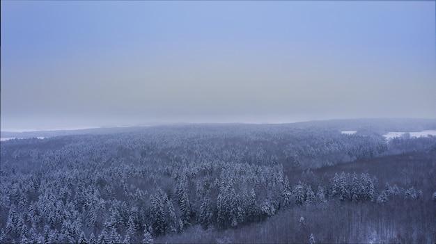 Прекрасный вид на бескрайний зимний лес с высоты птичьего полета