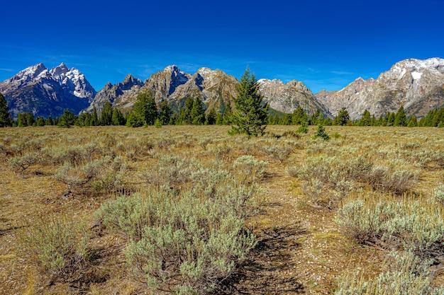 Прекрасный вид на гору гранд-тетон в национальном парке гранд-тетон в сша.