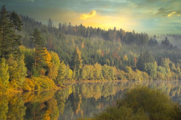 曇りの秋の日に湖と森の木々の美しい景色