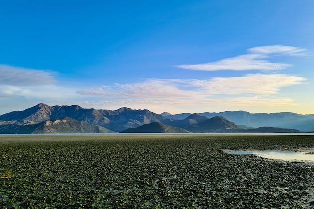 湖の美しい景色
