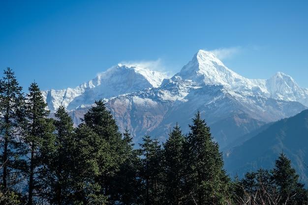 히말라야 산맥의 아름다운 풍경. 눈 덮인 산봉우리. 산에서 트레킹 개념