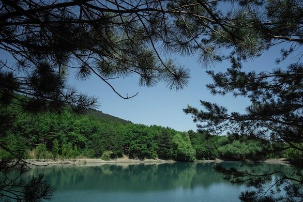 落葉樹の枝からの山の美しい景色。湖、海、クリミア