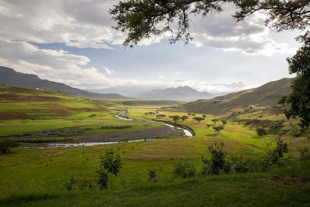 曇った青い空と山々に囲まれた川、木々、草の美しい景色