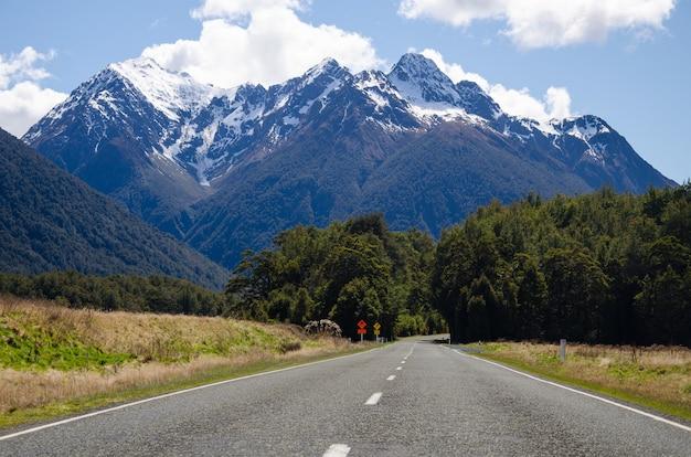ニュージーランドのミルフォードサウンドに通じる道の美しい景色