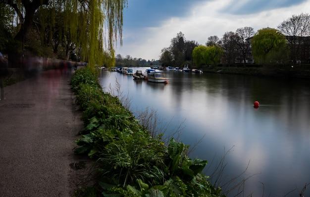Прекрасный вид на парусные лодки на канале в окружении растений и ив.