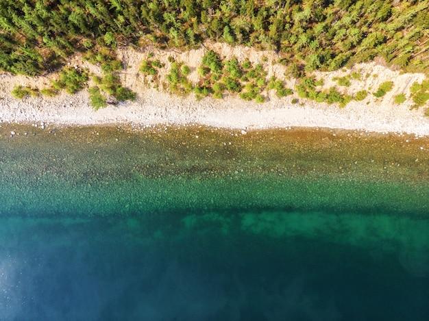 Прекрасный вид на песчаный берег озера на горизонте из лиственничных горных сосен.