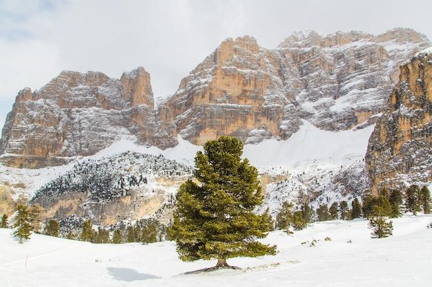 흐린 하늘 아래 알프스의 눈 덮인 산의 아름다운 전망