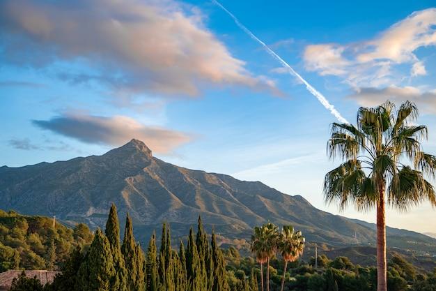 スペインの山ラコンチャの美しい景色。フロントプレーンのヤシの木