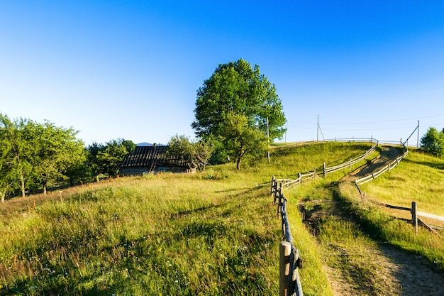 우크라이나어대로 산에서 마을의 아름 다운보기.