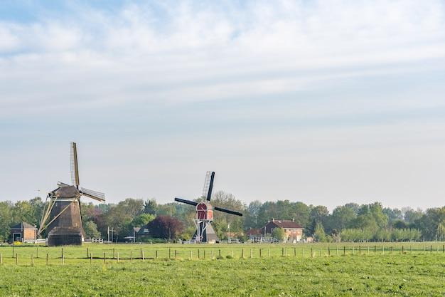 Прекрасный вид на ветряные мельницы на поле с пасмурным голубым небом на заднем плане