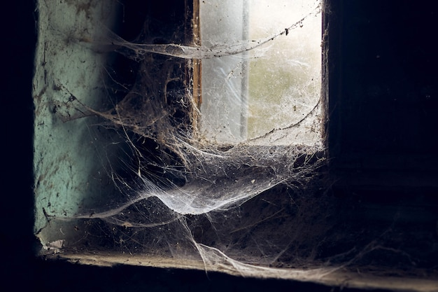 오래 된 버려진 건물에 거미줄에 덮여 창의 아름다운보기