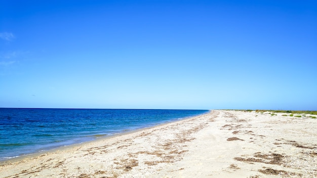 Прекрасный вид на длинный песок приморский берег океана, берег в солнечный летний день с голубым небом, тропические каникулы. панорамный живописный пейзажный горизонт природы.