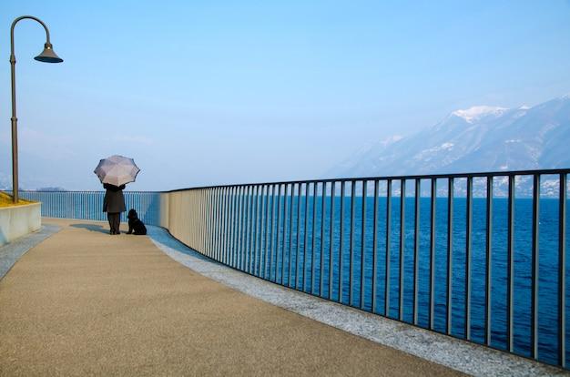 Bella vista di una persona con un ombrello e un cane in piedi su un molo in riva all'oceano