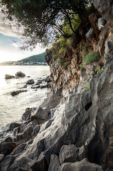 Beautiful view on sea, cliffs and trees at sunset