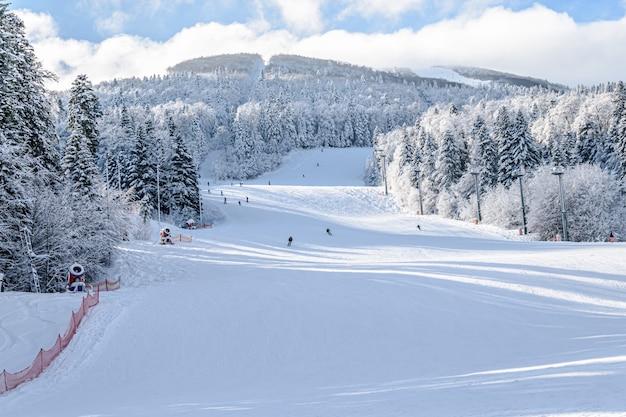 Bella vista di una pista da sci circondata da alberi in bosnia ed erzegovina