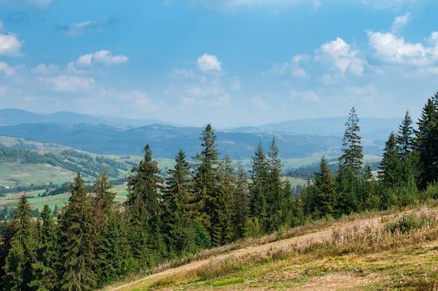Beautiful view of summer carpathian mountains