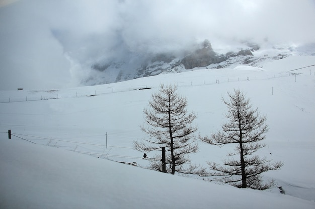 Beautiful view of swiss alps in spring on the famous sightseeing train glacier express