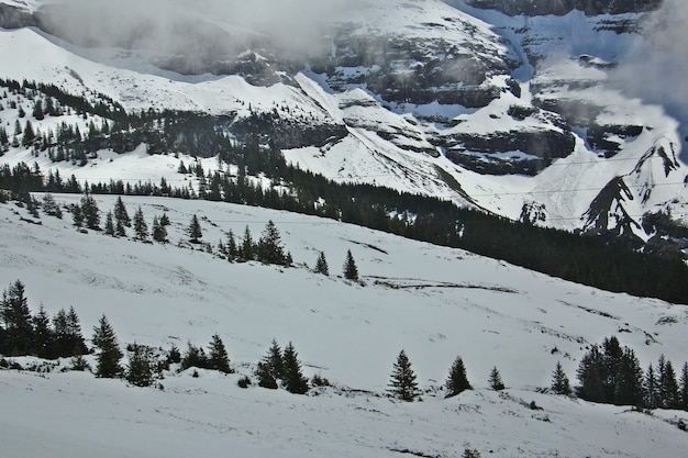 Beautiful view of swiss alps in winter and spring on the famous sightseeing train glacier in switzerland