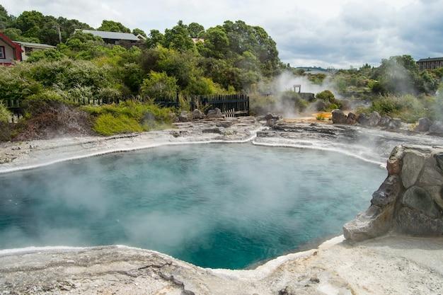 Beautiful view of the te puia geyser in rotorua, new zealand
