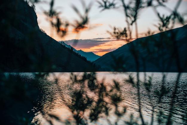Прекрасный вид на высокогорное озеро на рассвете через размытый силуэт ветвей деревьев.