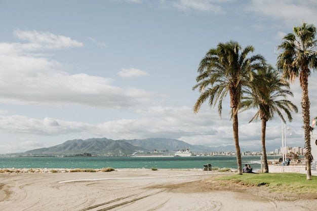 Beautiful view of a tropical sandy beach with palm trees