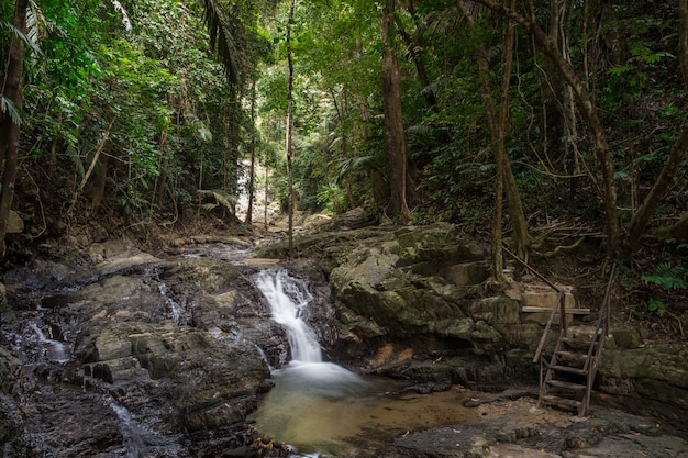 Beautiful views of the tropical forest with a waterfall in the national park of thailand