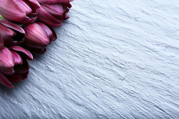 灰色の背景に美しい紫のチューリップ