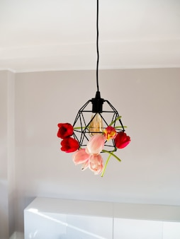 Beautiful vivid tulips in geometric lamp and light bulb of edison on white background.