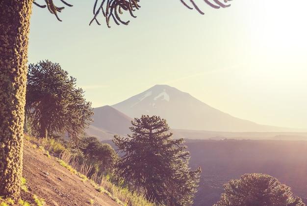 南米チリの美しい火山風景