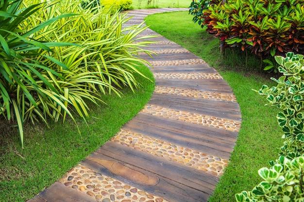 Beautiful walkway in the garden.