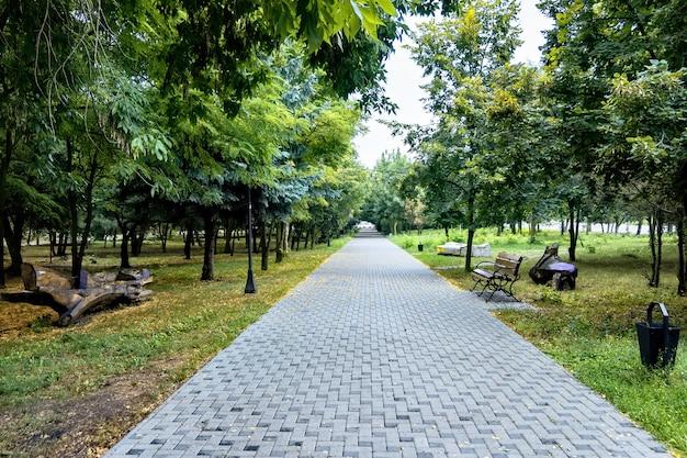 Красивая аллея в парке со скамейками