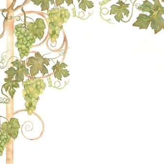 緑と黄色の色の美しい水彩手描きブドウフレーム。