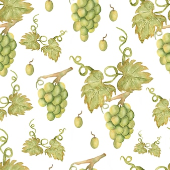 Beautiful watercolor hand drawn seamless green and yellow pattern with grapes branches and leaves.