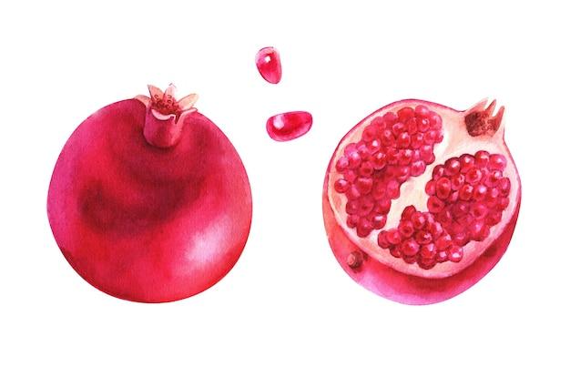 Красивый акварельный набор с фруктами и цветами граната.