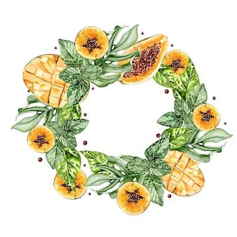 Красивая акварель тропический гнев с плодами папайи и манго. иллюстрация
