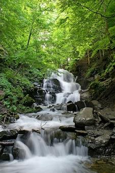 美しい滝と緑の木々。春の時間。