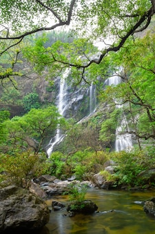 The beautiful waterfall in deep forest at khlong lan national park