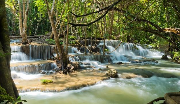 아름다운 폭포, 숲 배경, 풍경